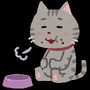 猫(アメショ、完食)
