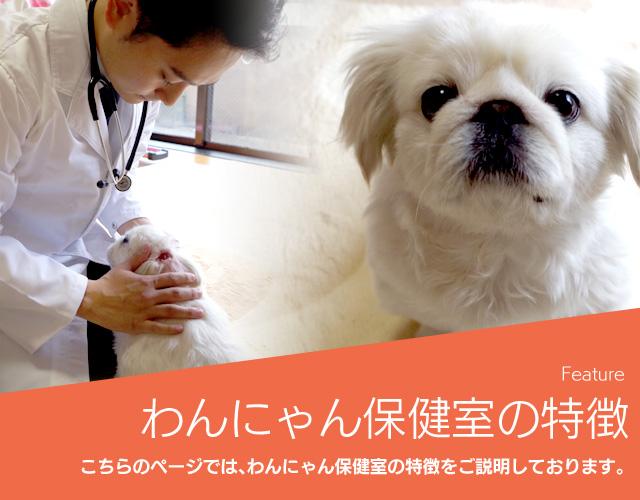 求人情報|【ペット往診】東京のわんにゃん保健 …