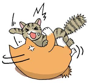 猫の喧嘩.jpg